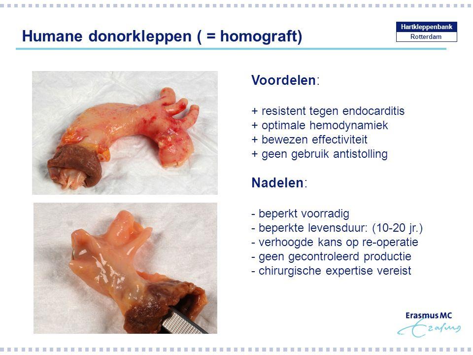 Humane donorkleppen ( = homograft)