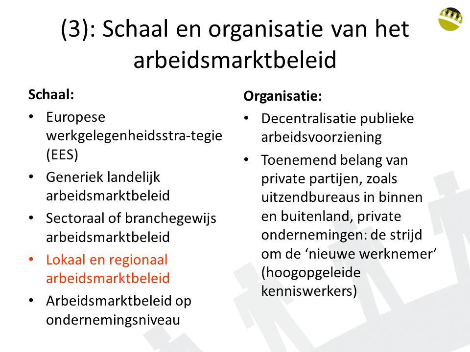 (3): Schaal en organisatie van het arbeidsmarktbeleid