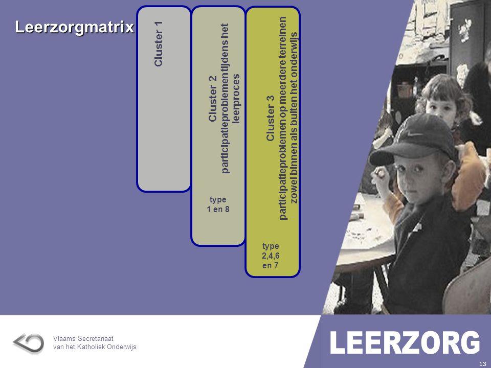 Cluster 2 participatieproblemen tijdens het leerproces