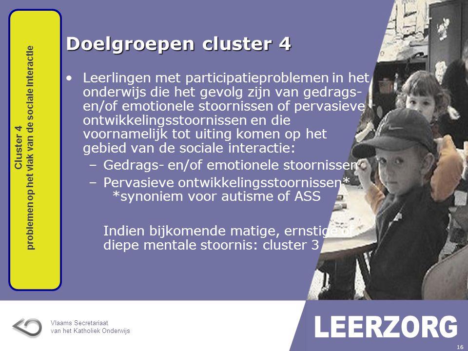 Cluster 4 problemen op het vlak van de sociale interactie