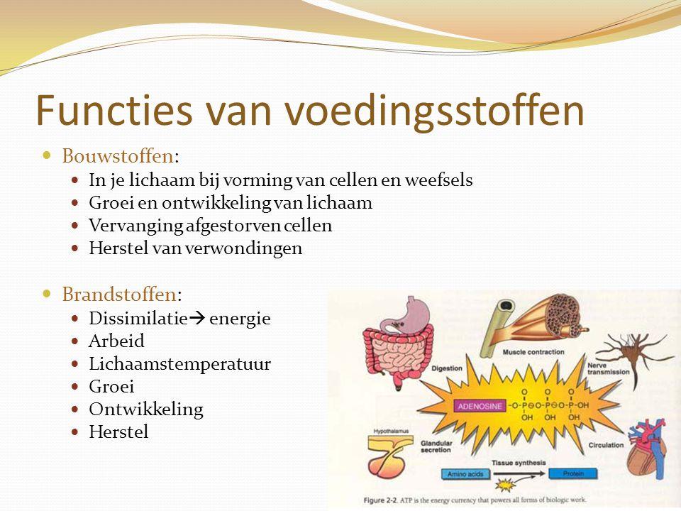 Functies van voedingsstoffen