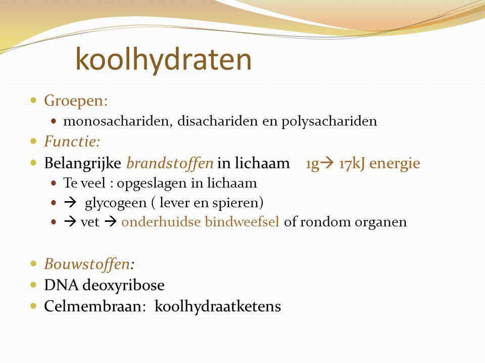 koolhydraten Groepen: Functie:
