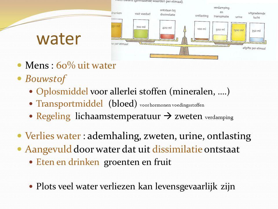 water Mens : 60% uit water Bouwstof