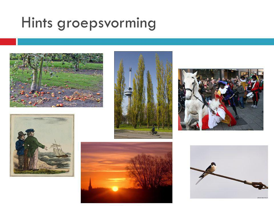 Hints groepsvorming
