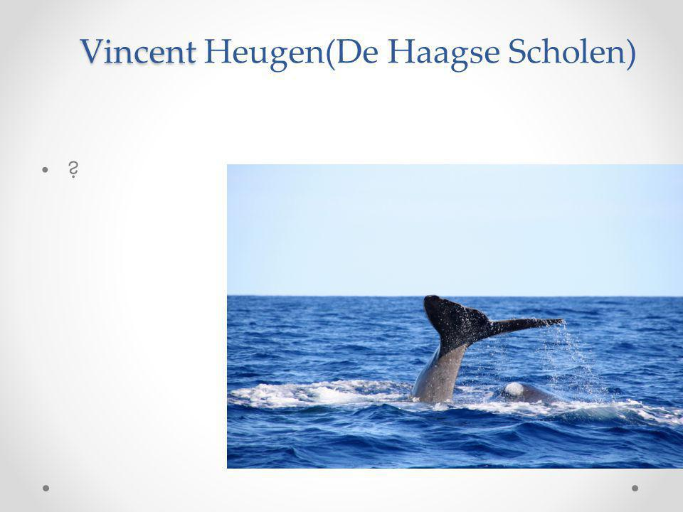 Vincent Heugen(De Haagse Scholen)