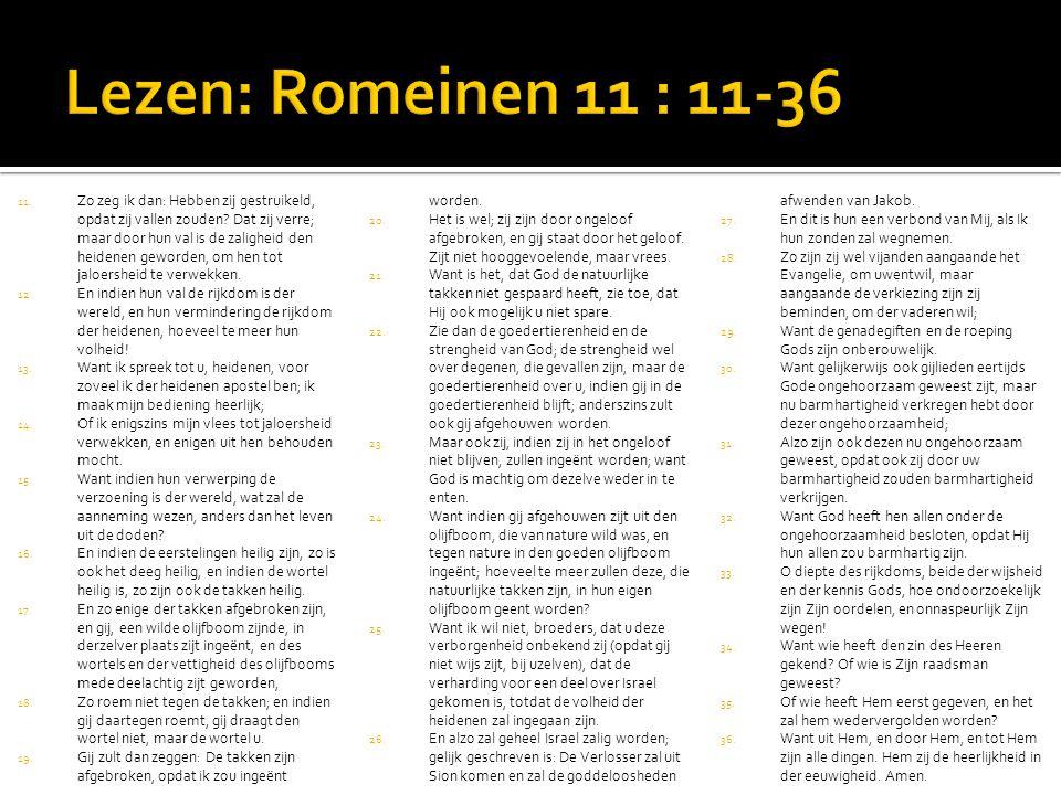 Lezen: Romeinen 11 : 11-36 Gij zult dan zeggen: De takken zijn afgebroken, opdat ik zou ingeënt worden.