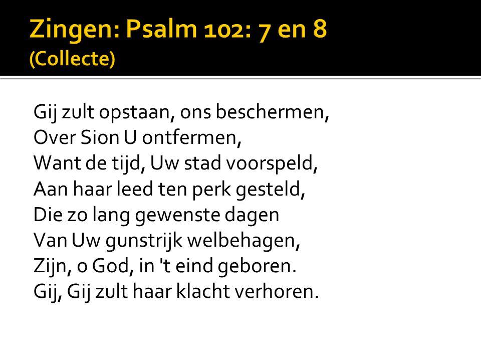 Zingen: Psalm 102: 7 en 8 (Collecte)