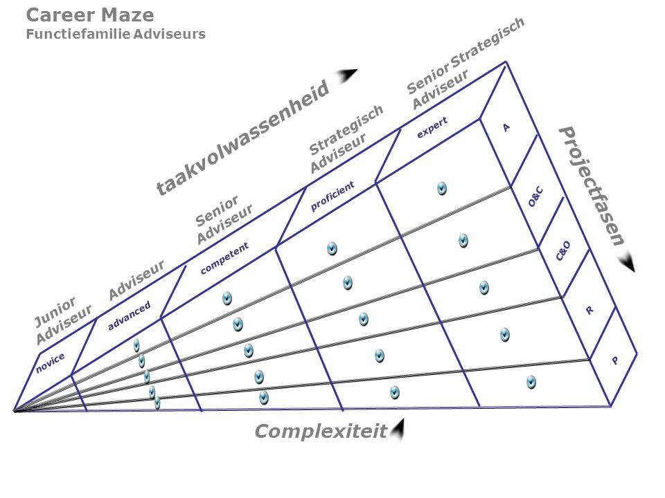 taakvolwassenheid Projectfasen Complexiteit