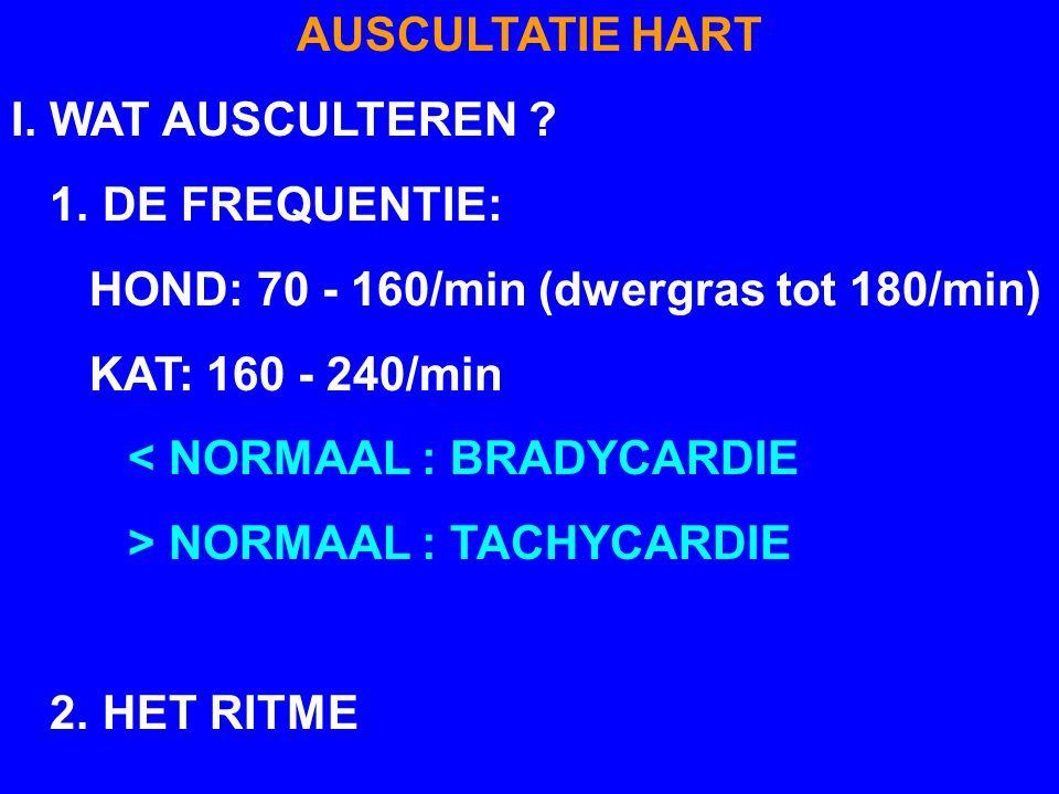 AUSCULTATIE HART I. WAT AUSCULTEREN 1. DE FREQUENTIE: HOND: 70 - 160/min (dwergras tot 180/min)
