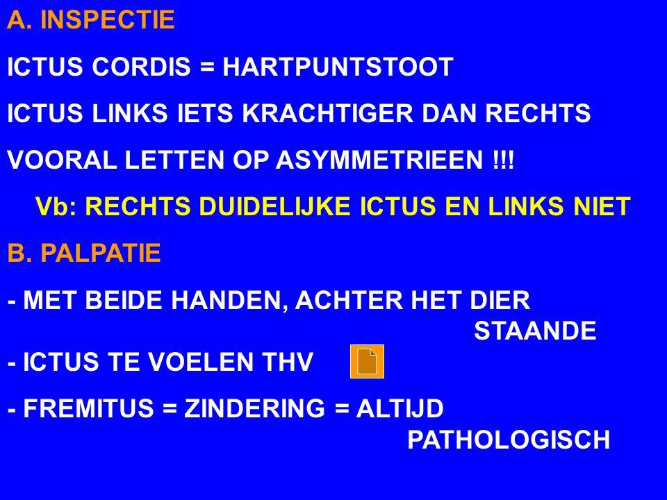 A. INSPECTIE ICTUS CORDIS = HARTPUNTSTOOT. ICTUS LINKS IETS KRACHTIGER DAN RECHTS. VOORAL LETTEN OP ASYMMETRIEEN !!!