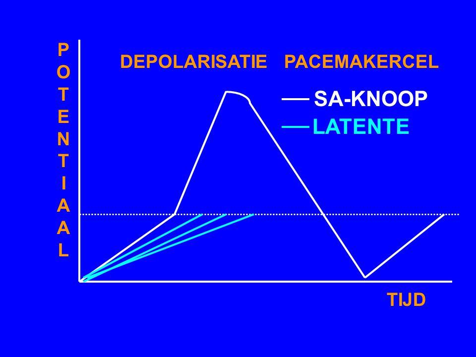 DEPOLARISATIE PACEMAKERCEL
