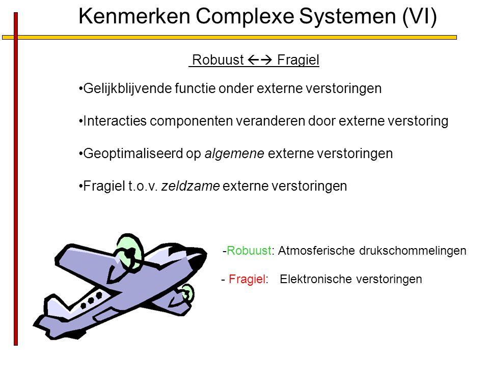 Kenmerken Complexe Systemen (VI)