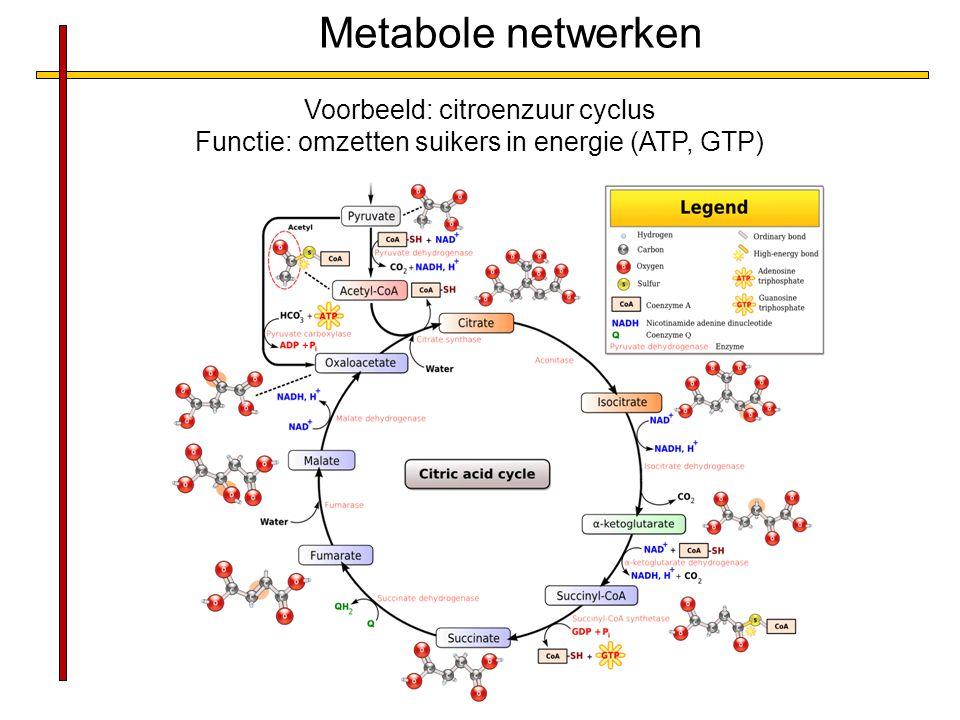 Metabole netwerken Voorbeeld: citroenzuur cyclus