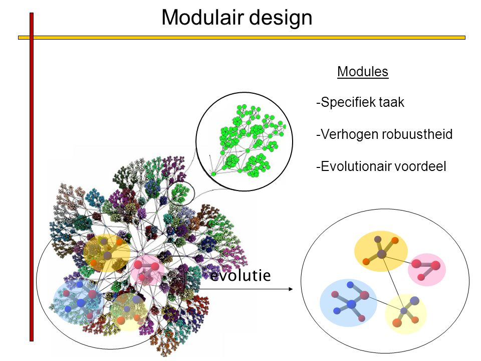 Modulair design evolutie Modules Specifiek taak Verhogen robuustheid