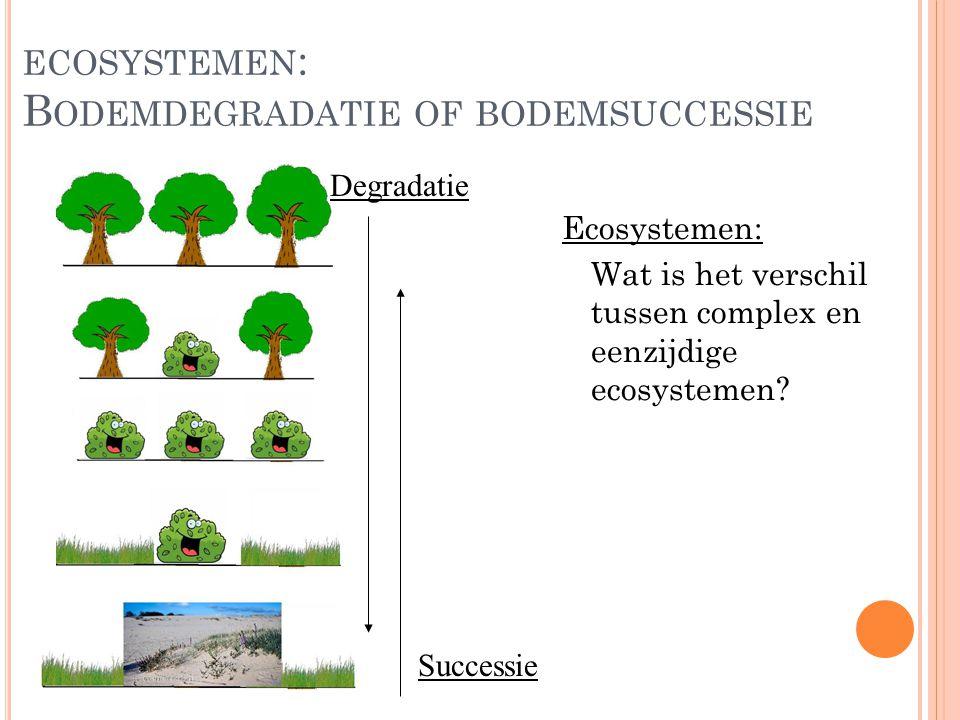 ecosystemen: Bodemdegradatie of bodemsuccessie