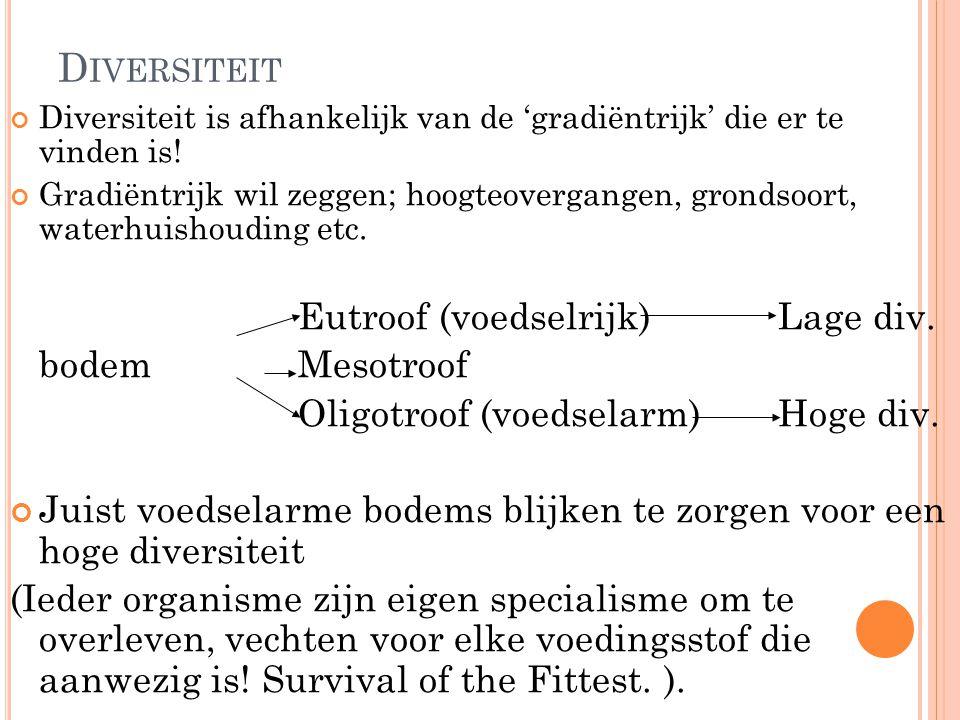 Diversiteit bodem Mesotroof Oligotroof (voedselarm) Hoge div.