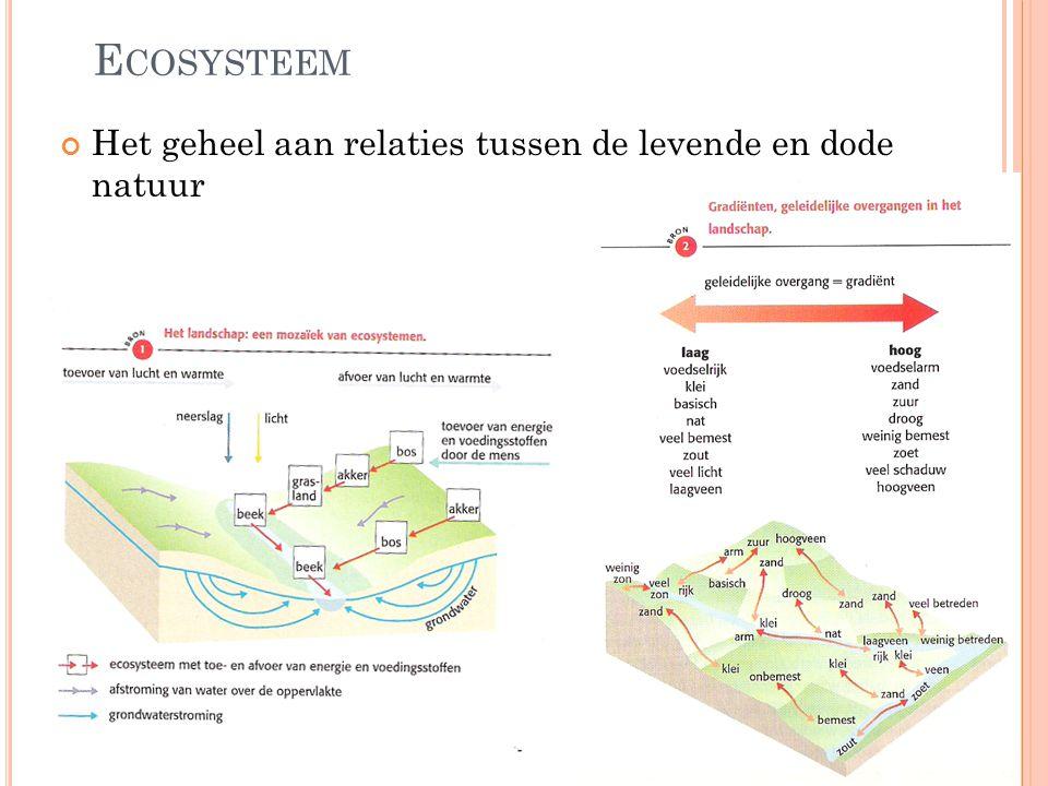 Ecosysteem Het geheel aan relaties tussen de levende en dode natuur