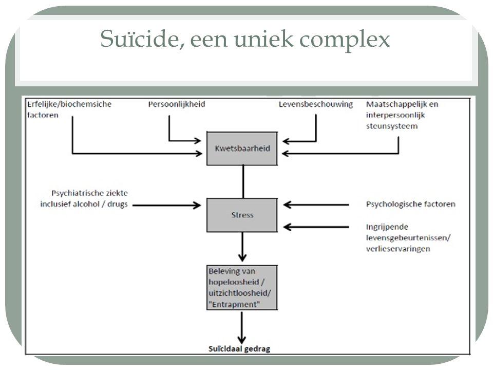 Suïcide, een uniek complex