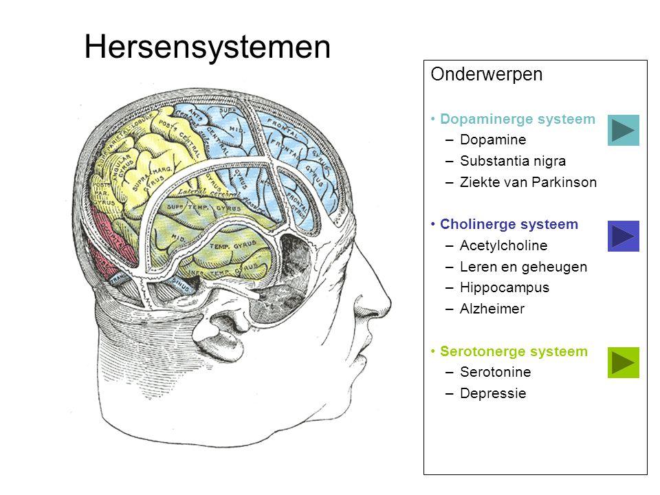 Hersensystemen Onderwerpen Dopaminerge systeem Dopamine
