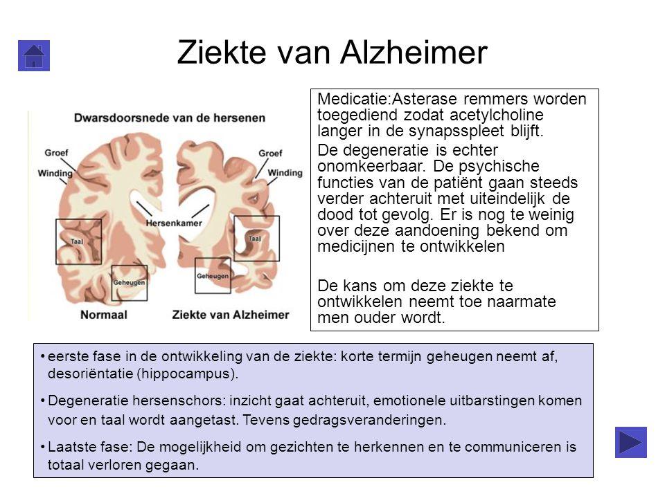 Ziekte van Alzheimer Medicatie:Asterase remmers worden toegediend zodat acetylcholine langer in de synapsspleet blijft.
