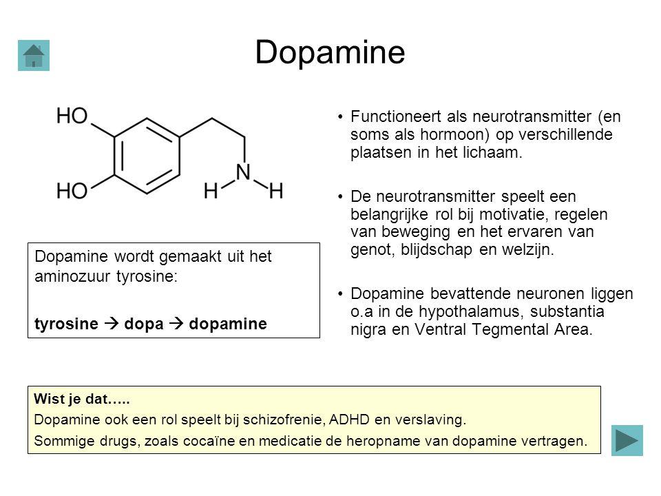 Dopamine Functioneert als neurotransmitter (en soms als hormoon) op verschillende plaatsen in het lichaam.