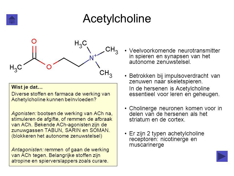 Acetylcholine Veelvoorkomende neurotransmitter in spieren en synapsen van het autonome zenuwstelsel.