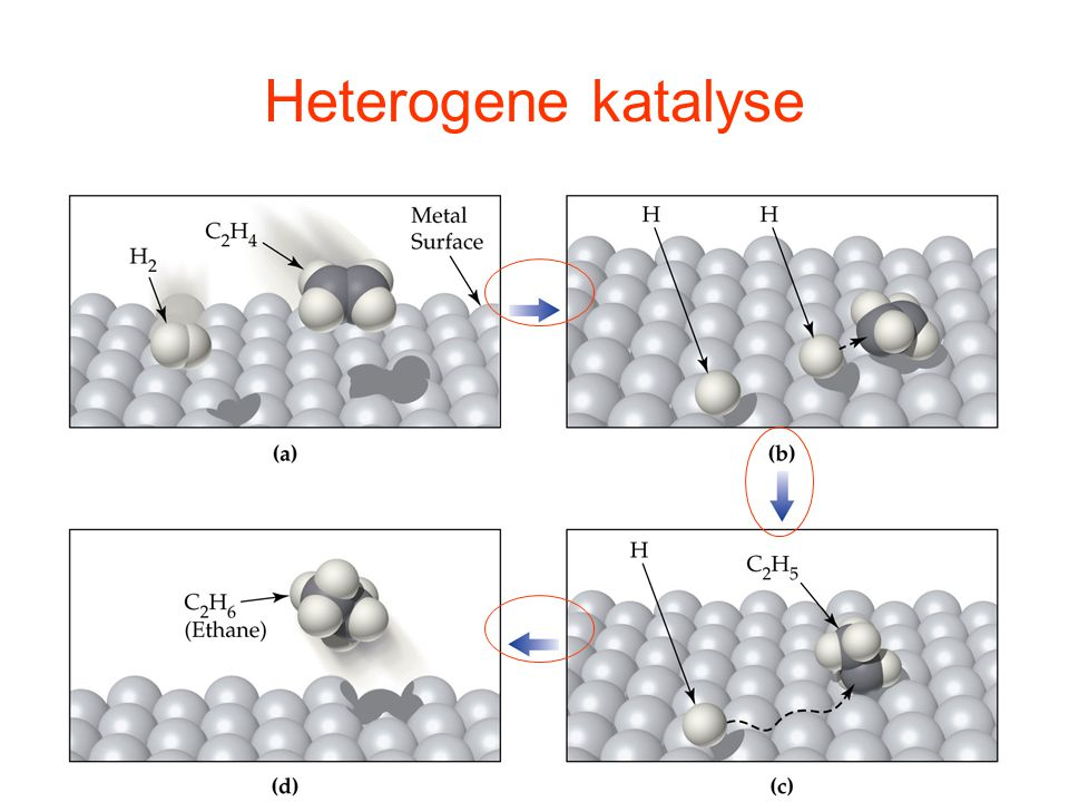 Heterogene katalyse