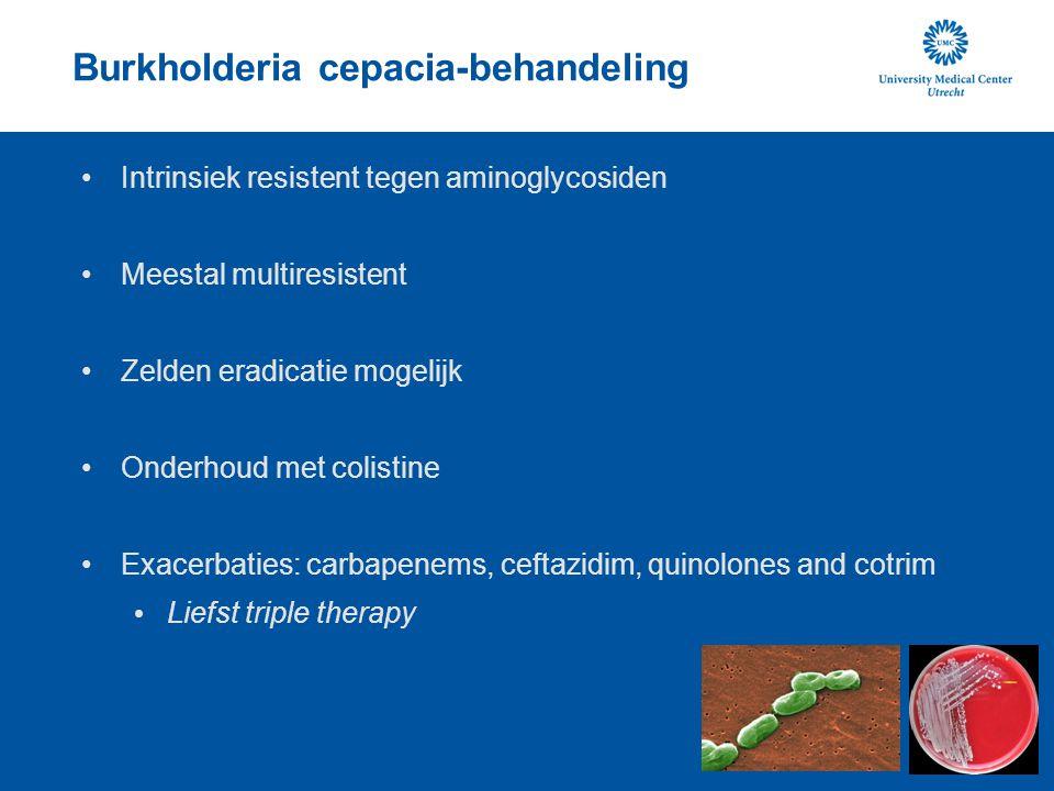 Burkholderia cepacia-behandeling