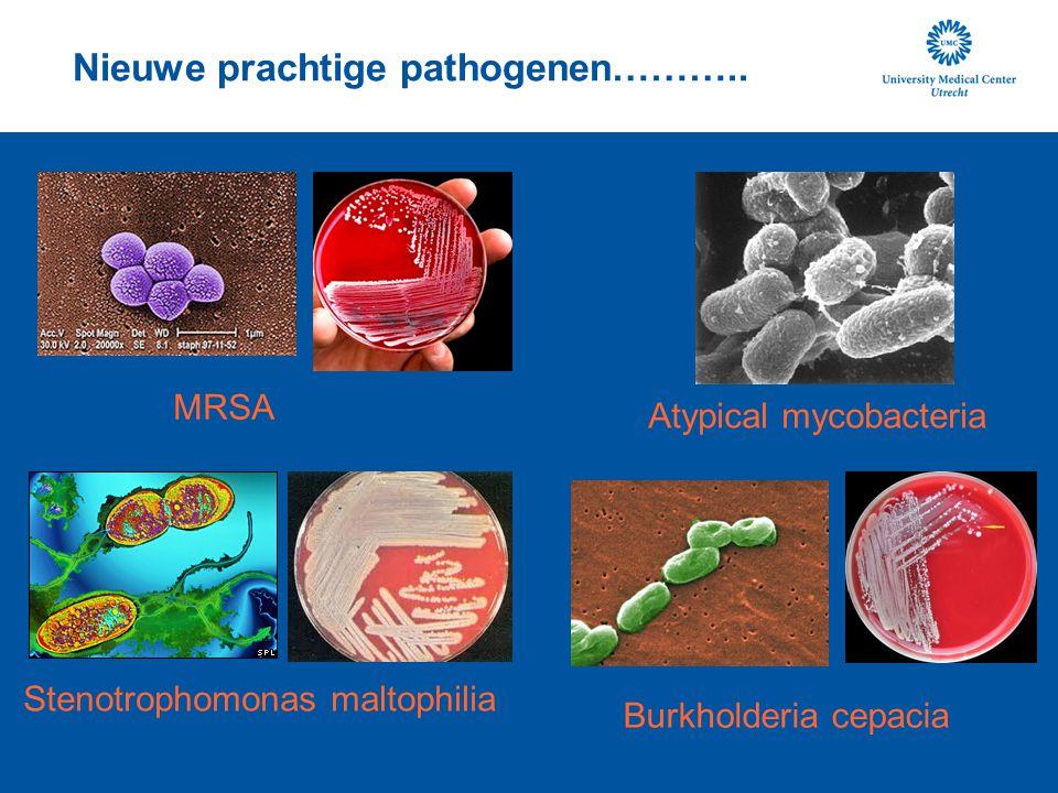 Nieuwe prachtige pathogenen………..