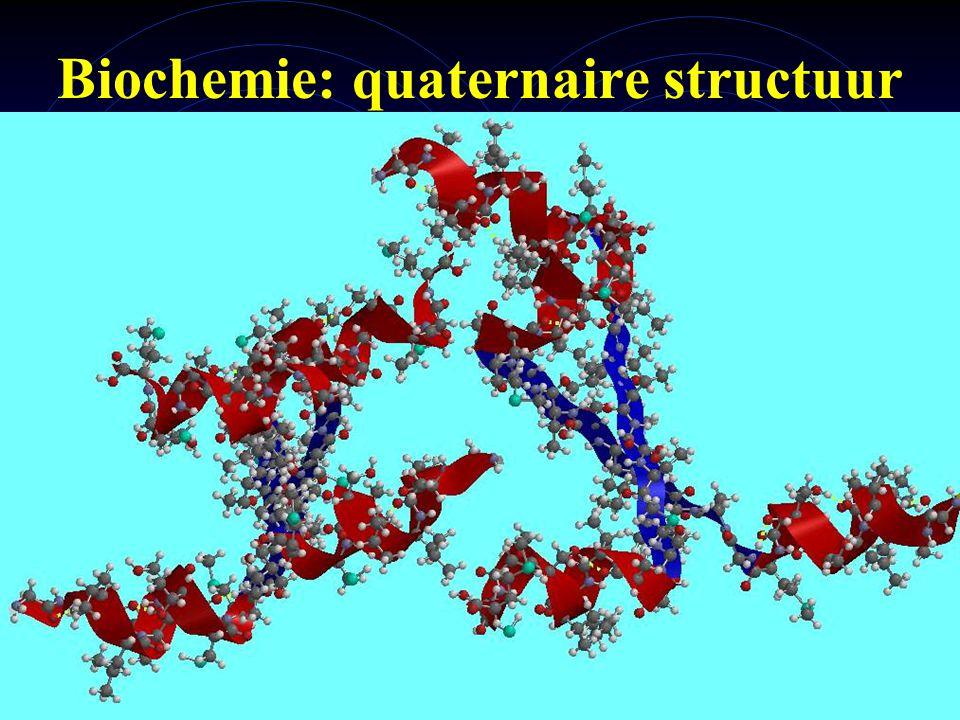 Biochemie: quaternaire structuur
