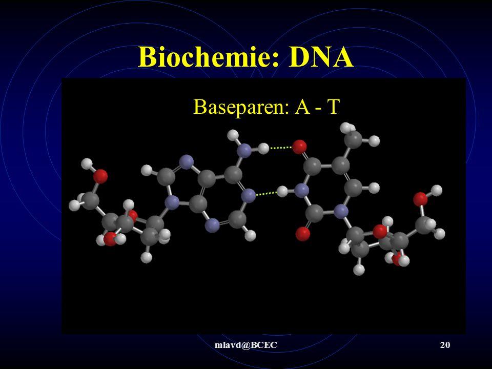 Biochemie: DNA Baseparen: A - T mlavd@BCEC