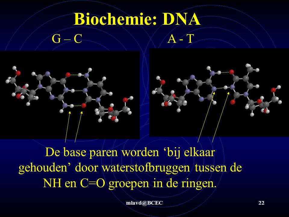 Biochemie: DNA G – C A - T. De base paren worden 'bij elkaar gehouden' door waterstofbruggen tussen de NH en C=O groepen in de ringen.