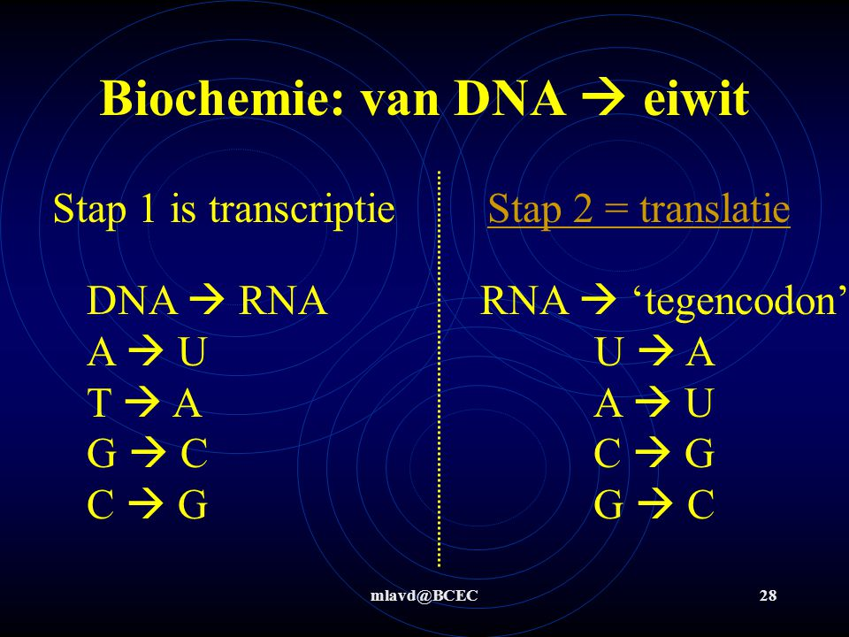 Biochemie: van DNA  eiwit