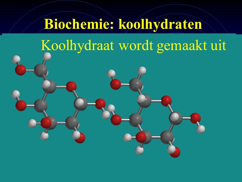 Biochemie: koolhydraten