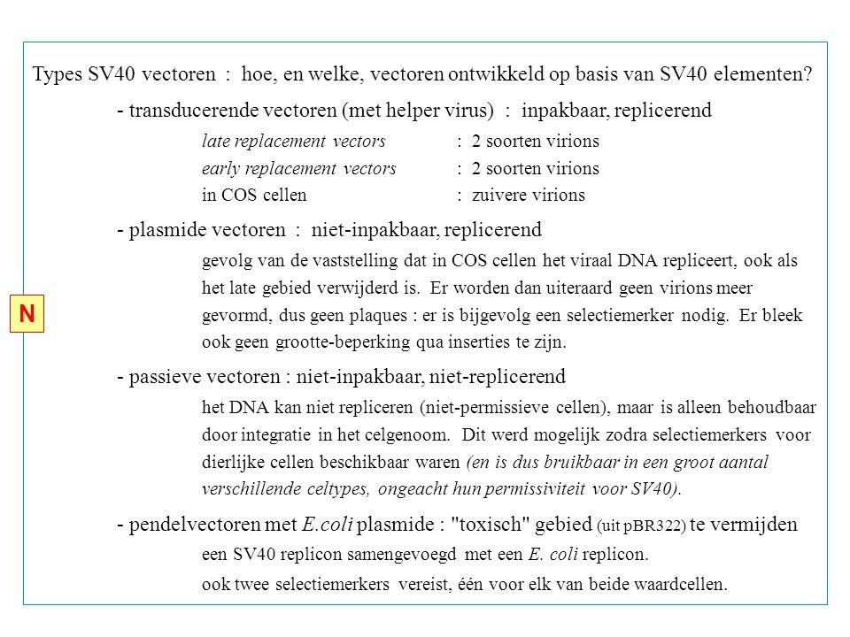 Types SV40 vectoren : hoe, en welke, vectoren ontwikkeld op basis van SV40 elementen