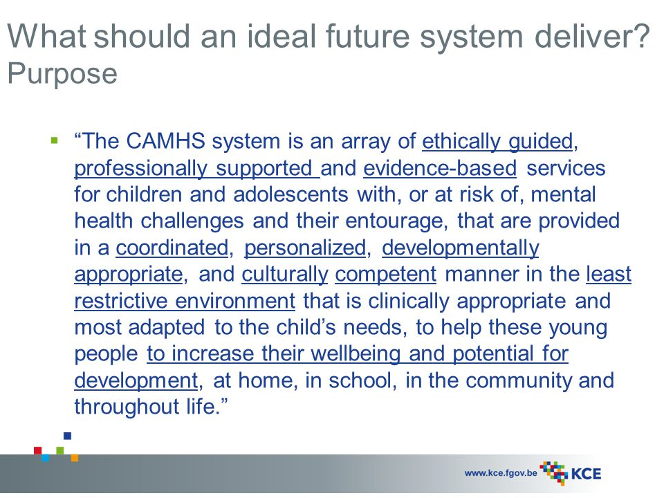 What should an ideal future system deliver Purpose