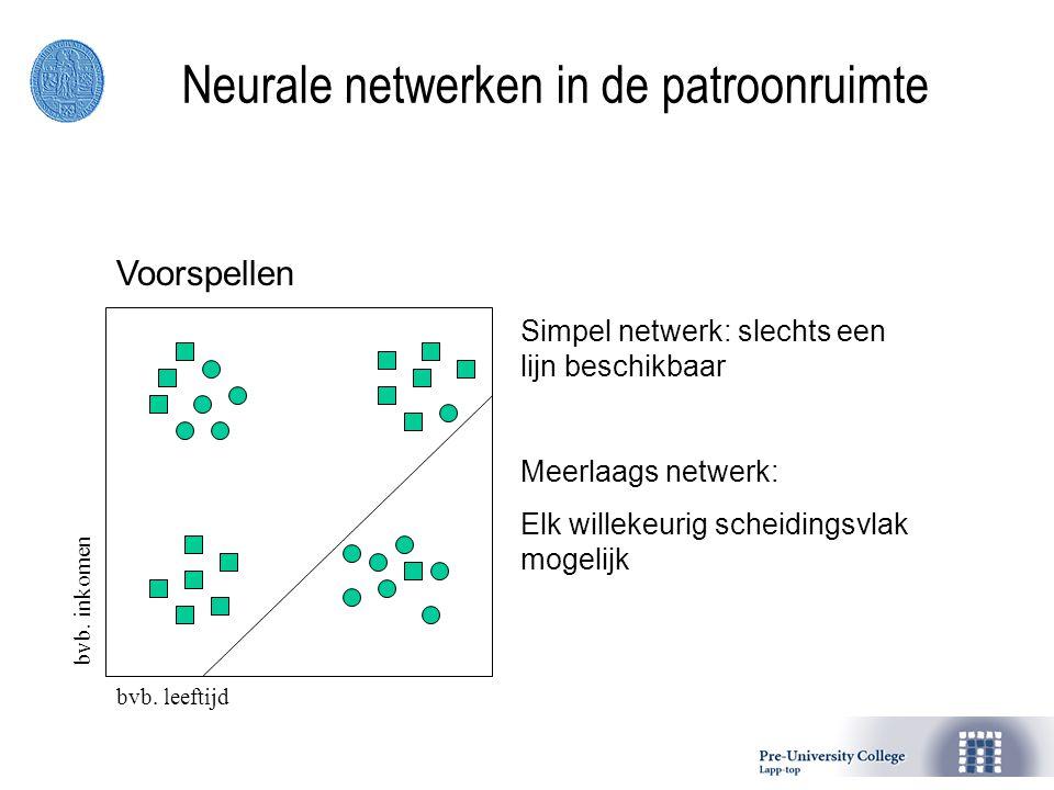 Neurale netwerken in de patroonruimte