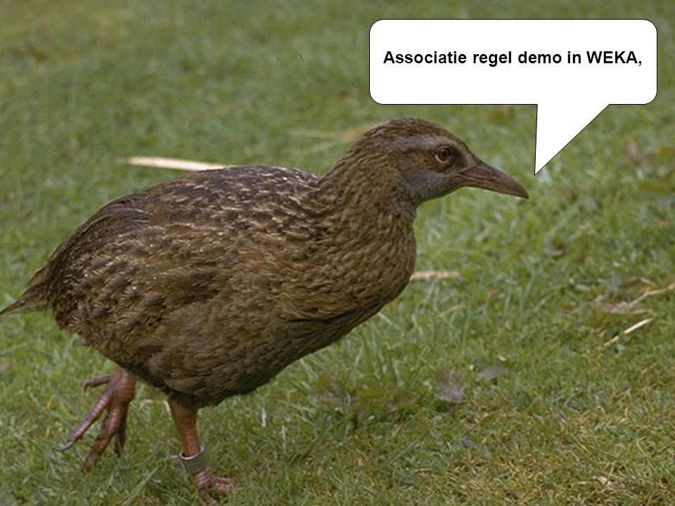 Associatie regel demo in WEKA,
