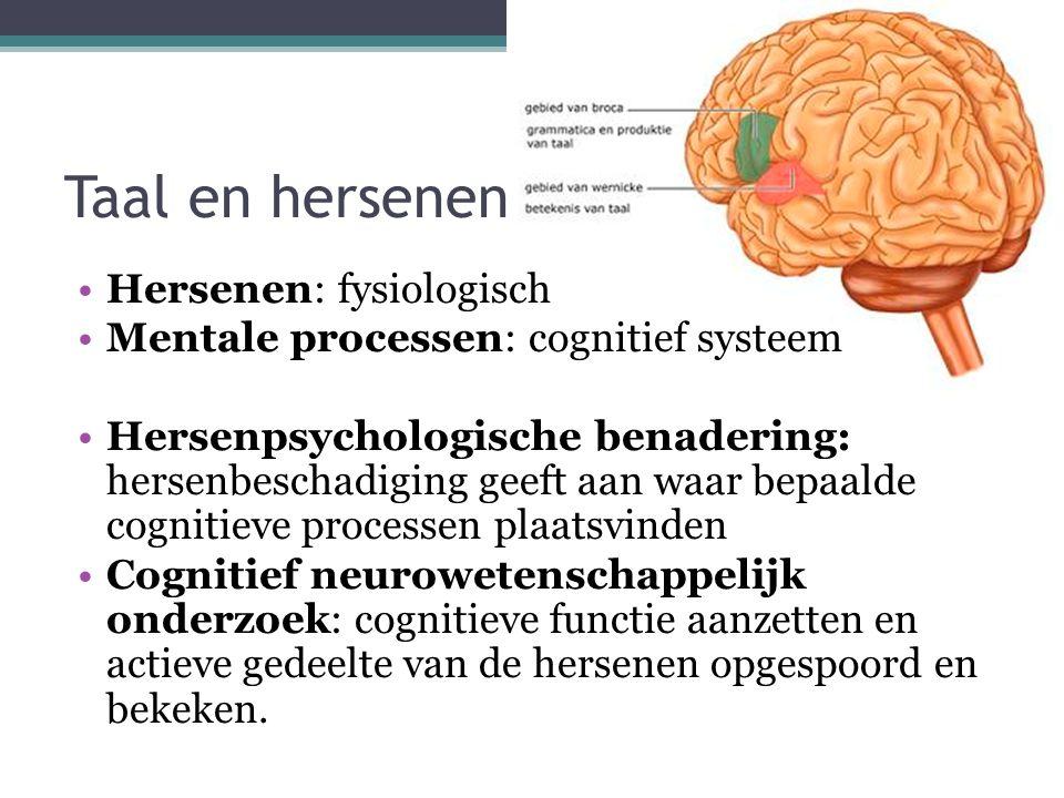 Taal en hersenen Hersenen: fysiologisch