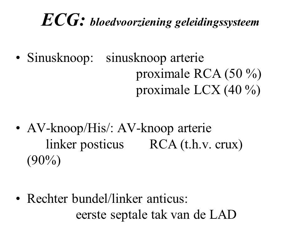ECG: bloedvoorziening geleidingssysteem