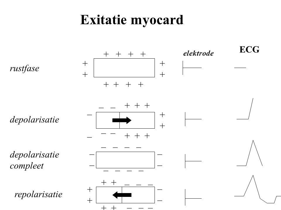 Exitatie myocard ECG + + + + + + + + rustfase + + + + _ _ + + + _ _