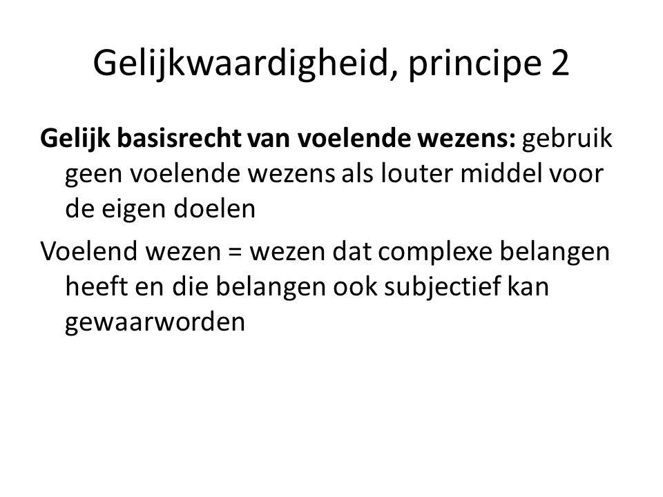 Gelijkwaardigheid, principe 2