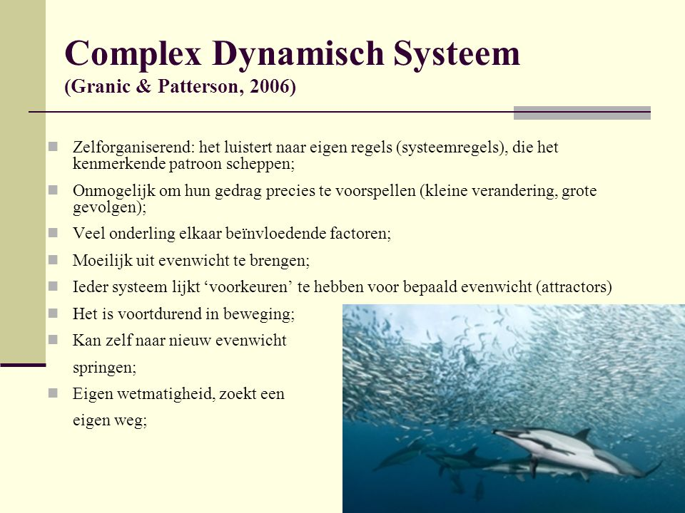 Complex Dynamisch Systeem (Granic & Patterson, 2006)