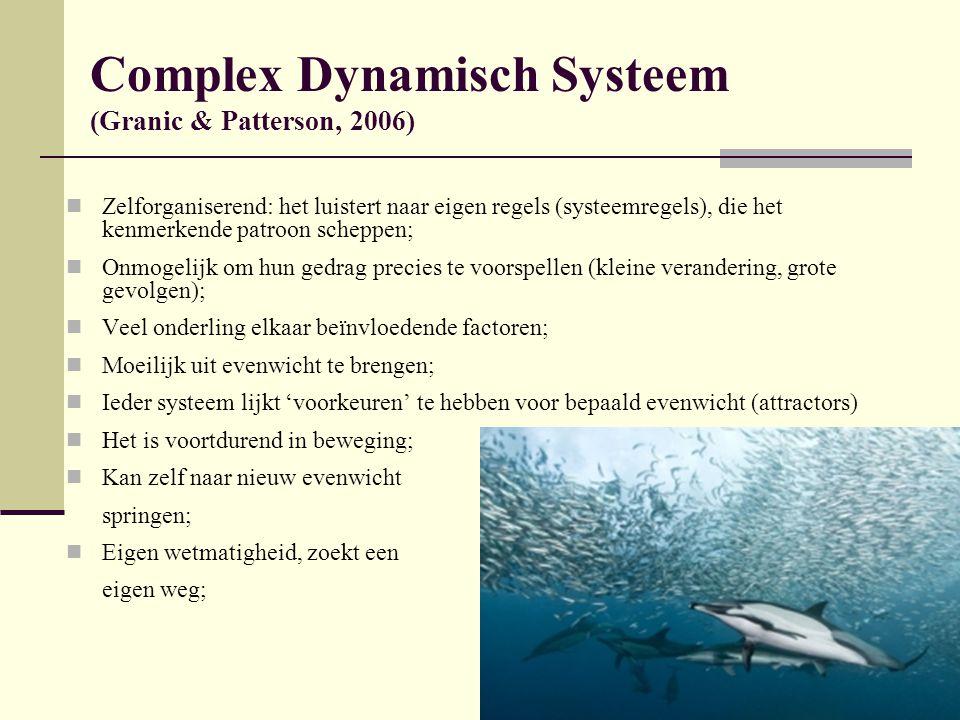 Complex Dynamisch Systeem (Granic & Patterson, 2006)