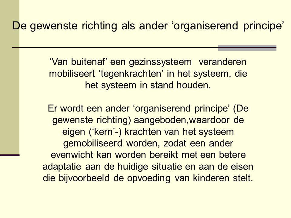 De gewenste richting als ander 'organiserend principe'