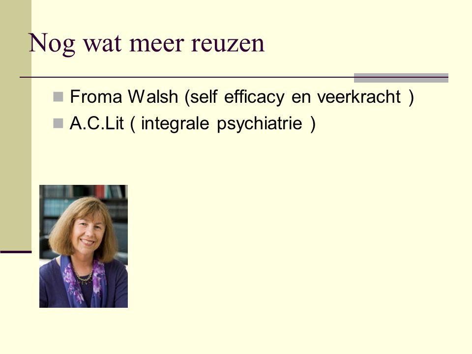 Nog wat meer reuzen Froma Walsh (self efficacy en veerkracht )