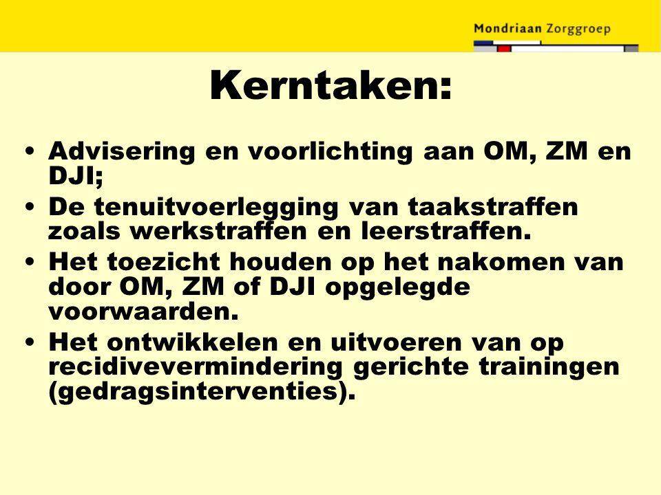 Kerntaken: Advisering en voorlichting aan OM, ZM en DJI;