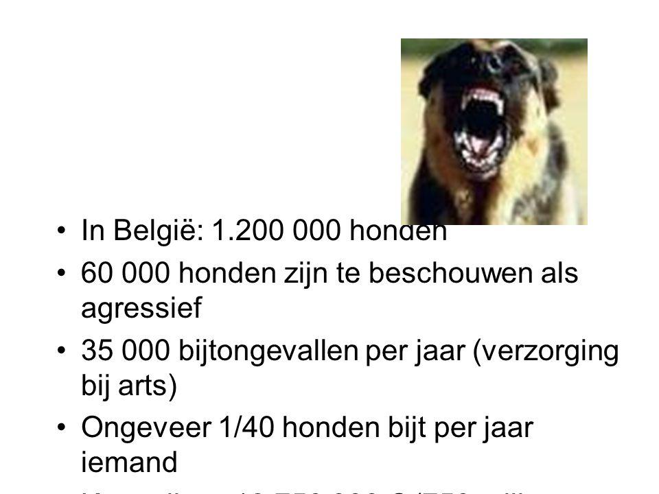 In België: 1.200 000 honden 60 000 honden zijn te beschouwen als agressief. 35 000 bijtongevallen per jaar (verzorging bij arts)