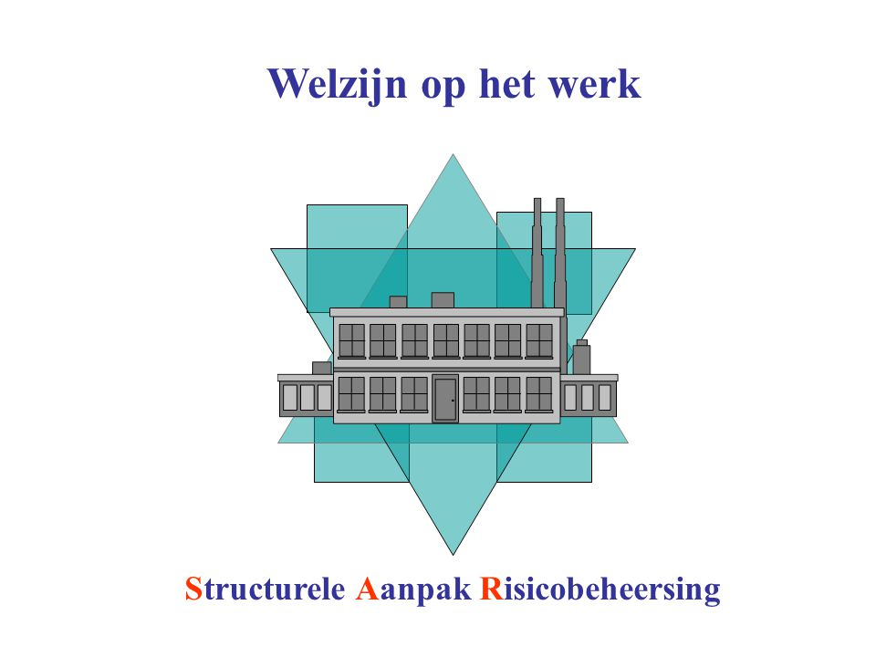 Structurele Aanpak Risicobeheersing