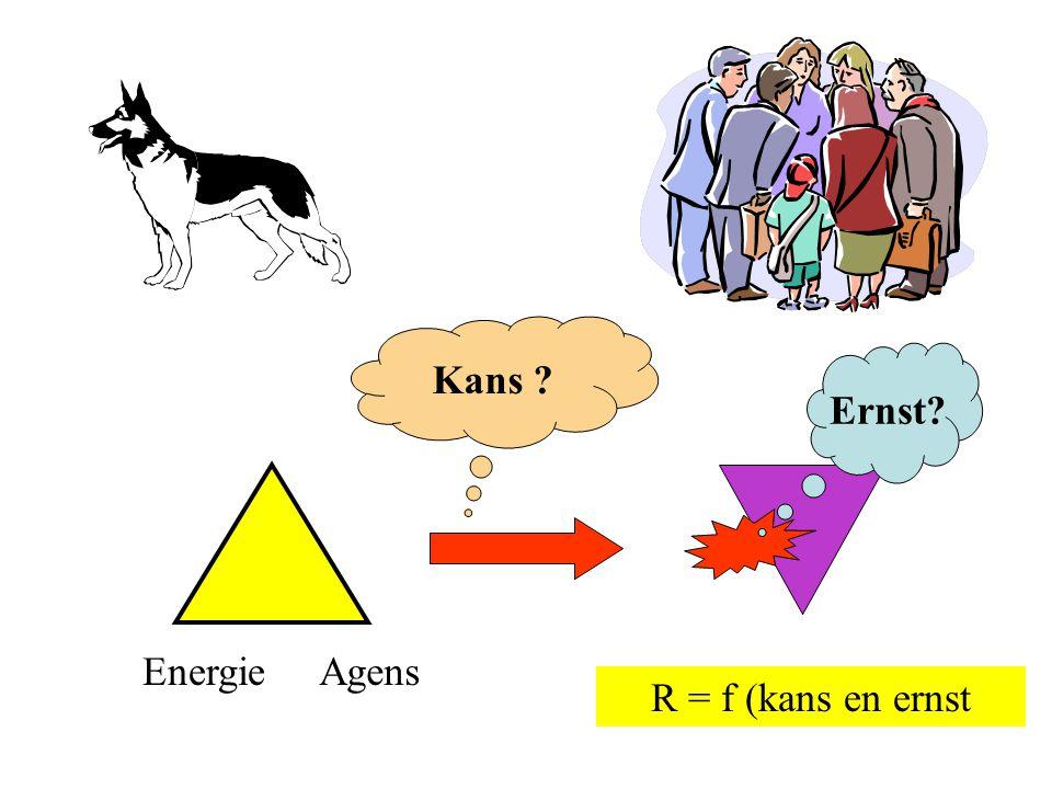 Kans Ernst Energie Agens R = f (kans en ernst